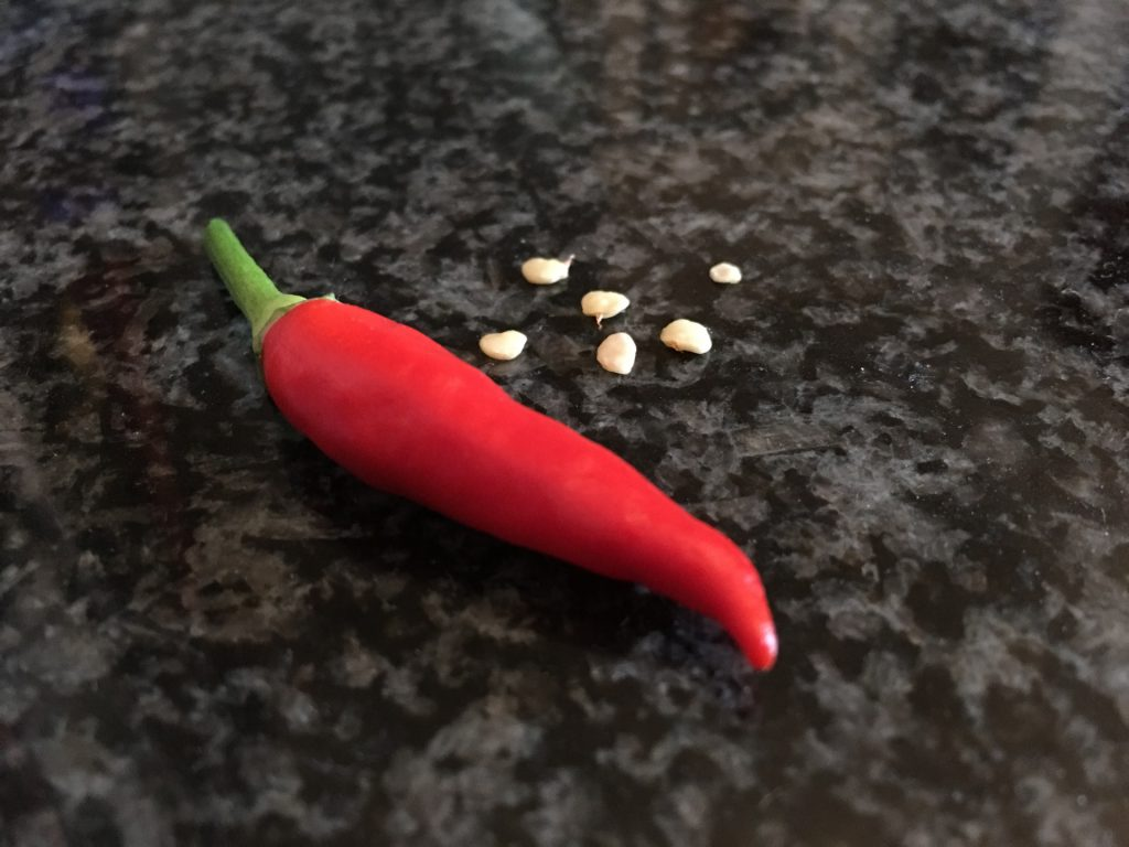 Basket of Fire Chili Samen